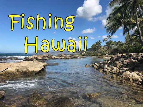 Fishing Hawaii Oahu Waikiki Ko Olina