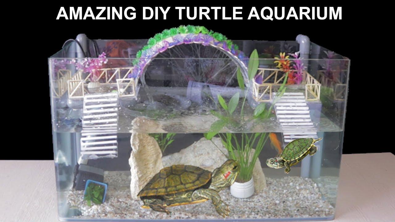 Amazing Diy Turtle Aquarium Fish Tank