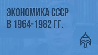 Экономика СССР в 1964-1982 гг. Видеоурок по истории России 11 класс