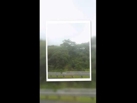 Keaiwa Heiau State Rec Area - Oahu, HI from Emily W.