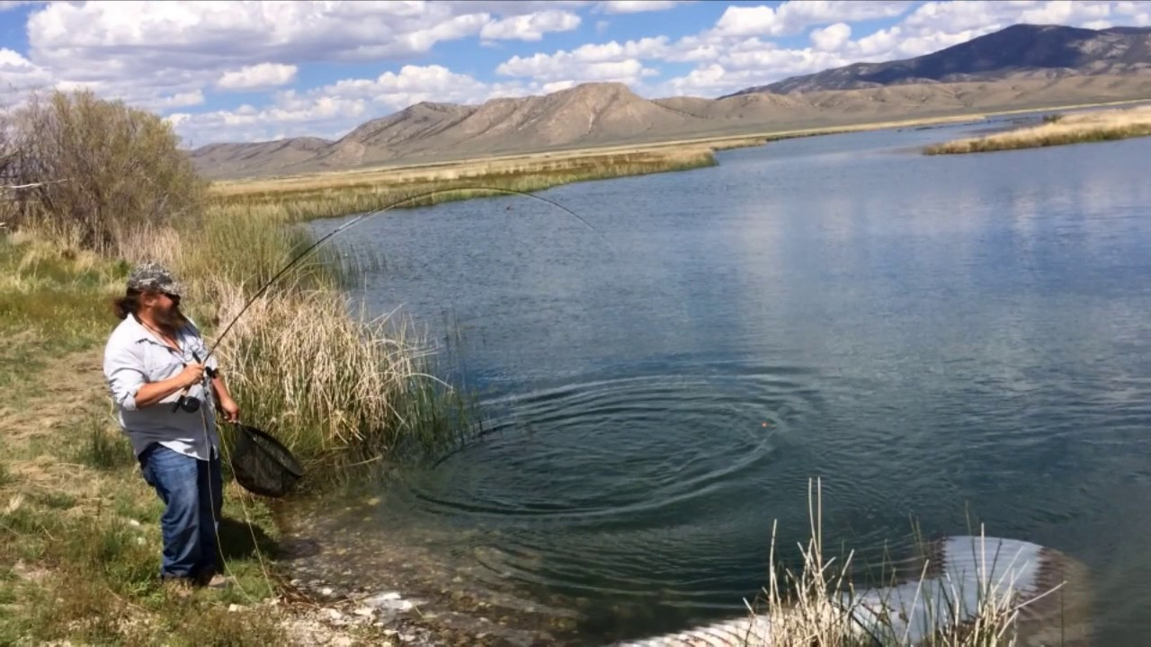 Fly fishing the ruby marsh 5 17 youtube for Fishing license nevada