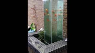 DIY FISH POND OBSERVERTORY