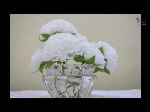 DIY Carnation flower by Nirja
