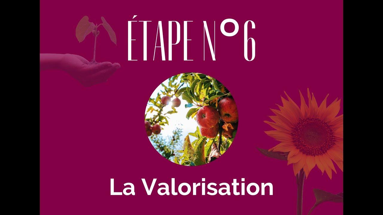 """""""Politique Handicap, mode d'emploi""""  Episode 6 - La Valorisation"""