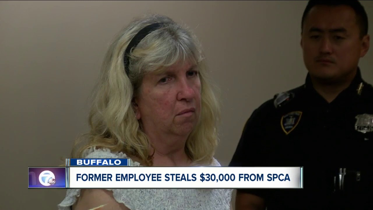 $30,000 stolen from Erie County SPCA by former employee