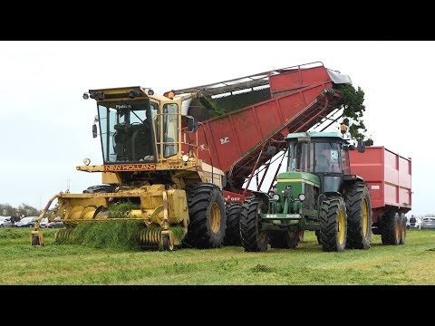 New Holland 1905 Self-propelled Forage Harvest Cutting Grass W/ Tim Buggy Wagon   Danish Agriculture