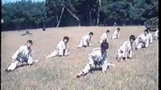 itf korea