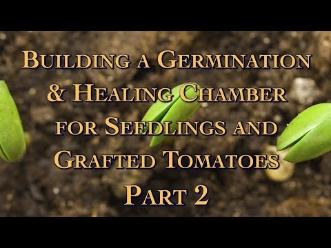 Building a Germination & Healing Chamber for Seedlings and Grafted Tomatoes Part 2