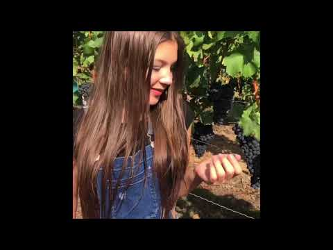 Clip summer & Autumn Germany 2018 \\\\\\ Daymar Oropeza