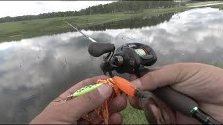 Рыбалка на щуку в жабовнике. Ловля щуки на воблеры и блесны.