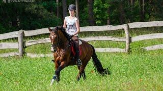 Moja pasja - jeździectwo!
