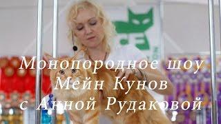 Монопородное шоу Мейн кунов с Анной Рудаковой