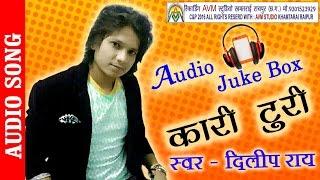 new cg song kari turi dilip ray hit chhattisgarhi geet hd video 2016 avm studio raipur