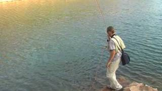 Pesca a mosca en Canarias; Fly-fishing in The Canary Islands