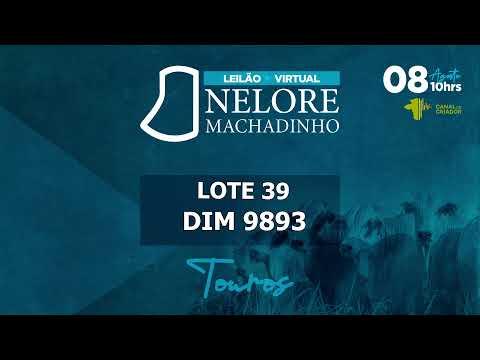 LOTE 39 DIM 9893