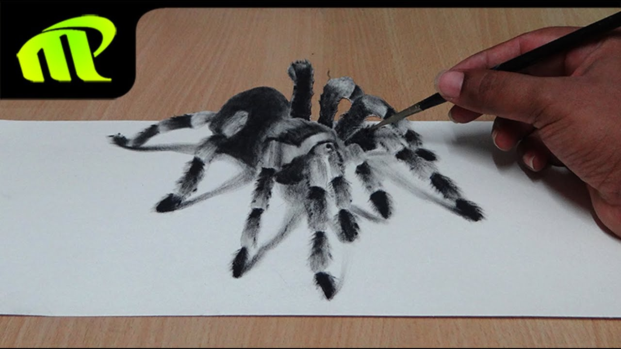 How To Draw 3d Spider Anamorphic Illusion Tarantula Trick Art