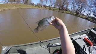 Spring Crappie Fishing for Spring Dinks