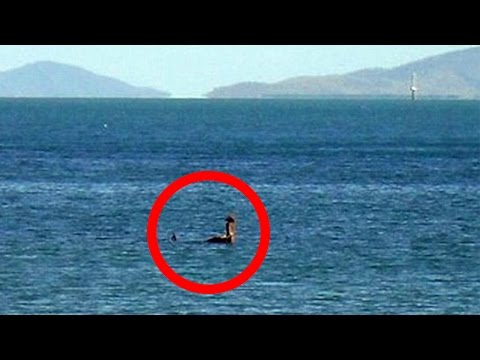 Was The Loch Ness Monster Spotted?