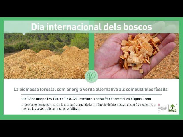 Jornada Biomassa Forestal, 17/03/2021