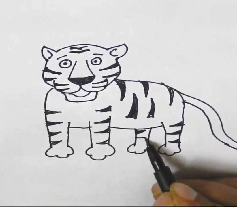 How to draw a tiger in easy steps for children kids beginners step by step youtube