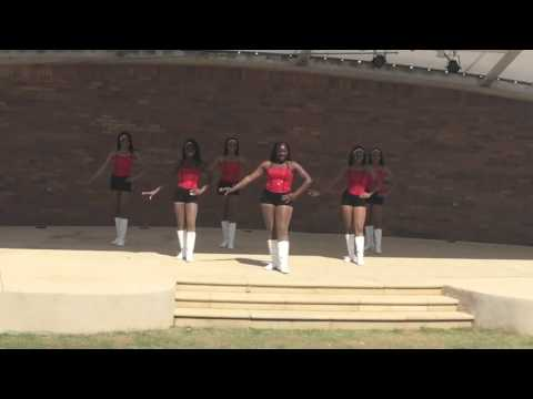 Banneker High School Ebony Flame 2015