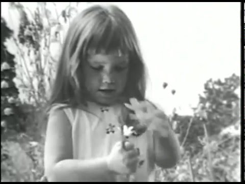 Famous  Daisy  Attack Ad 1964 Presidential Election