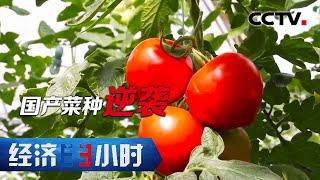 《经济半小时》 20201013 山东寿光:国产菜种逆袭| CCTV财经 - YouTube