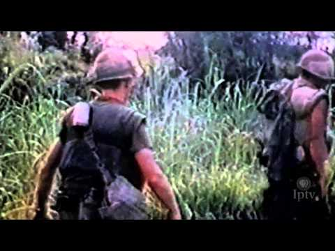 Post-Traumatic Stress Disorder (PTSD) and Vietnam Veterans