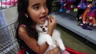 Bia Lobo e Chloe no Pet Shop