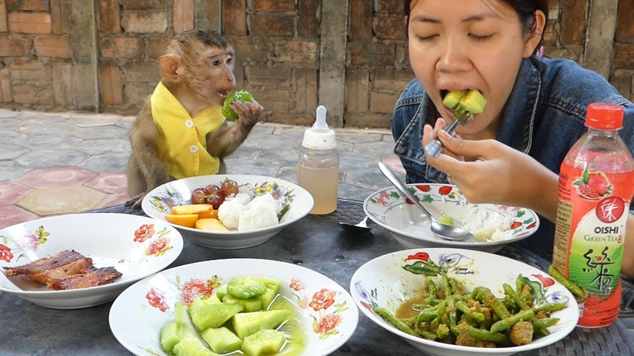 Monkey Baby, Dodo Very Happy To Join Lunch With Mommy