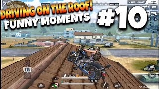 Rules of Survival Funny Moments #10