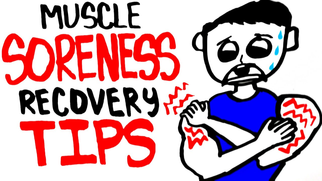 Muscle soreness and muscle growth