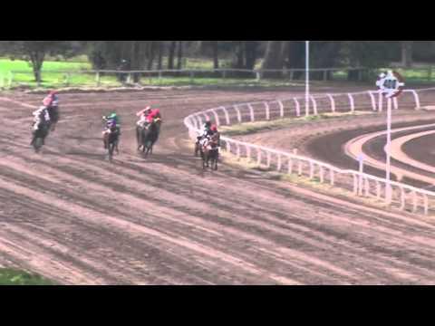 Carrera 03 8 De Mayo Jockey Club Rio Cuarto