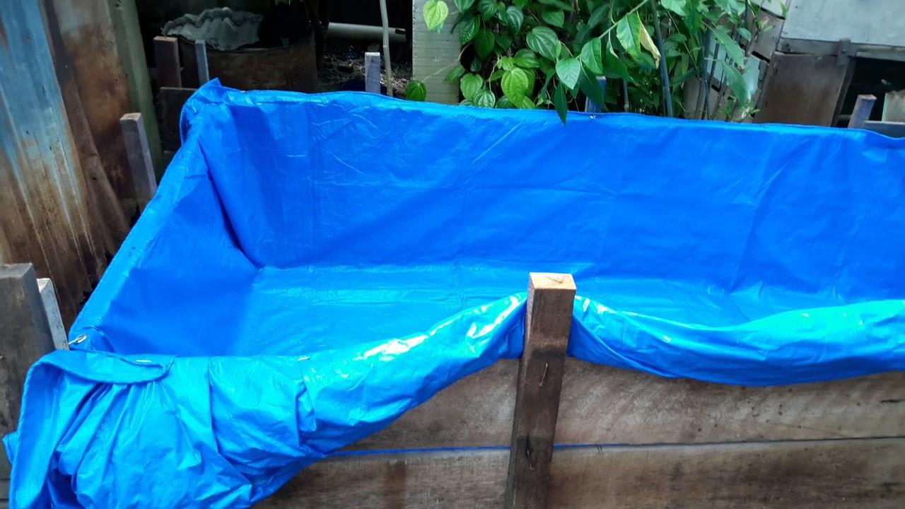 Budidaya Kolam Terpal Ikan Lele Untuk Pemula(Part.1) - YouTube