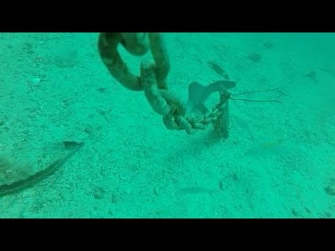 GoPro On Deep Sea Anchor Line - Watch For The Sea Life