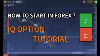 How to Start in Forex [ IQ OPTION GUIDE TUTORIAL ]
