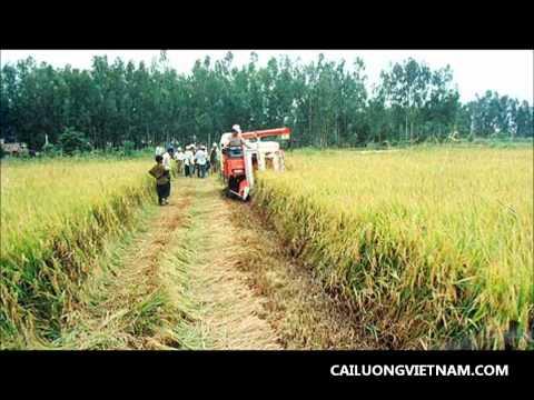 Hát về nông trường Sông Hậu: Cao Thị Thắng-Hoàng Vị Thanh