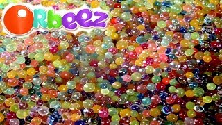 ORBEEZ Magic Growing Water Balls + Dinosaur Egg Raised Observe and Play I Kids Toys Collector KTC