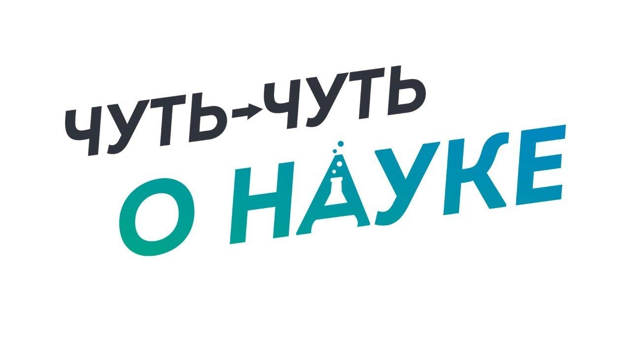Благотворительный стрим с Квашеновым