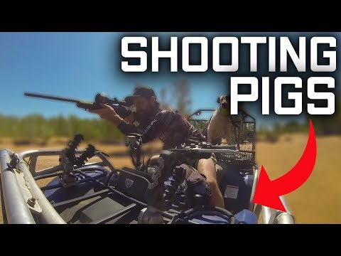 Shooting Pigs With Kolpin Gun Rack, From Austraco, Pig Hunting Australia, Shooting Wild Boar