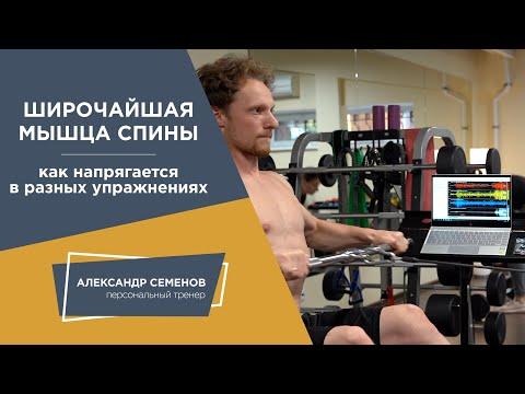 Упражнения для мышц спины. Подтягивания. Горизонтальная тяга. Миограф