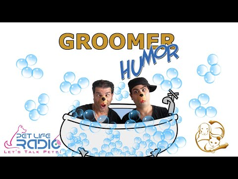 Groomer Humor - The Wonderful World Of Dogs