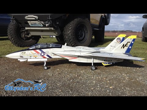 Freewing F-14 Tomcat Twin 80mm EDF Jet Flight Demo & Bonus Footage