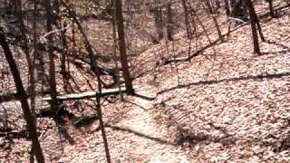 Mountain Biking Liberty University Single Track Dam Trail