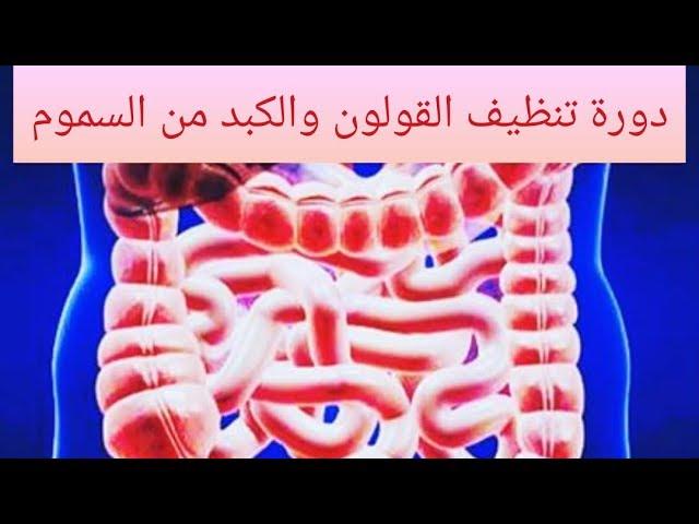 نظام غذائي لتنظيف الكبد والقولون من السموم د ندى الحربي Youtube
