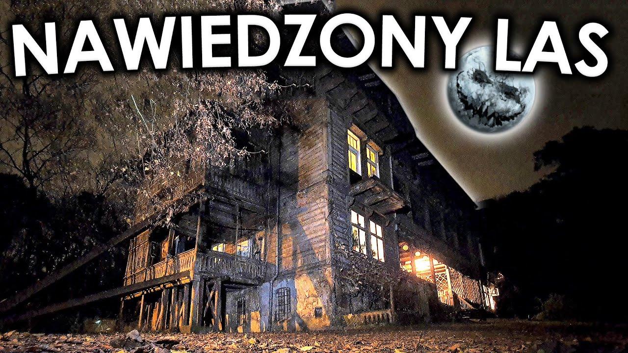 Nawiedzony las Popioły w Łodzi