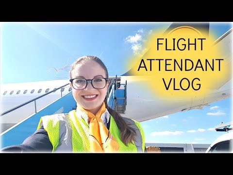 4 Day Trip to South Korea I Flight Attendant Life I Vlog 24