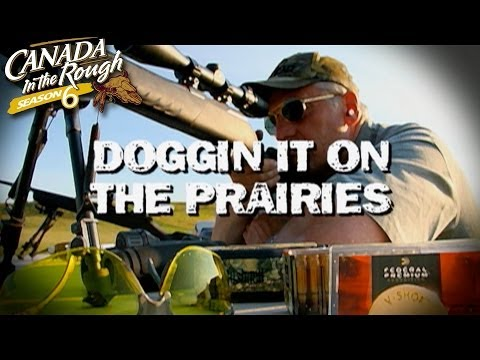 Doggin It On The Prairies (Prairie Dog Hunting)