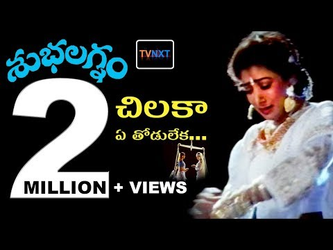 Chilaka Ye Thodu Leka Video Song || Subhalagnam Movie || Jagapathi Babu, Aamani, Roja || TVNXT