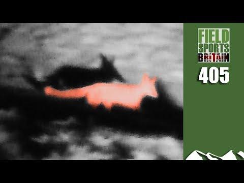 Fieldsports Britain - Half Cut Foxing